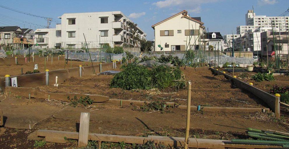 市街地農地