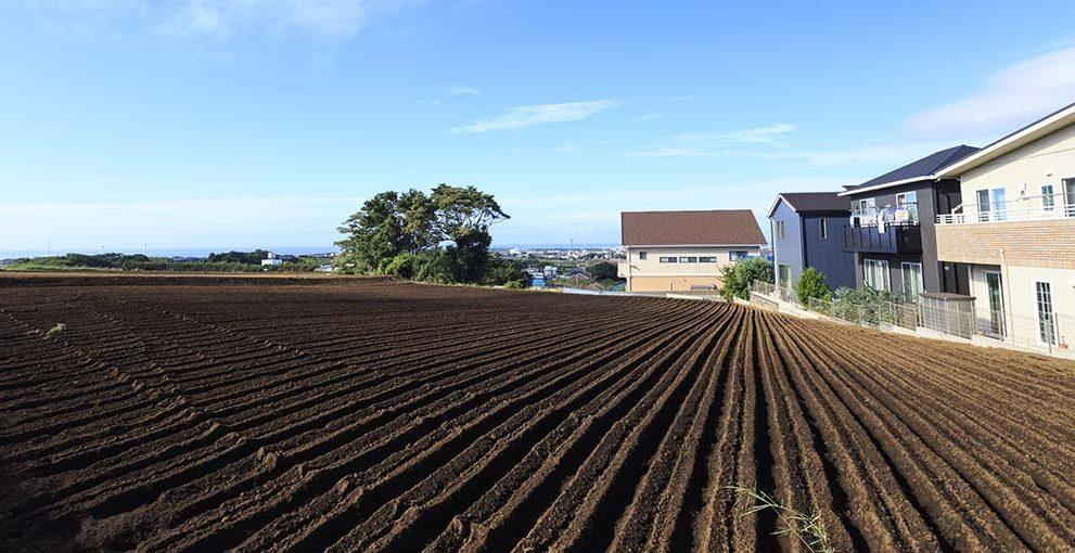 市街地周辺農地